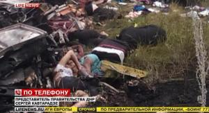 Malaysian-Airlines-MH-17-Crash-Pictures-11